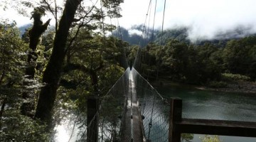 Tramping New Zealand's Hollyford Track
