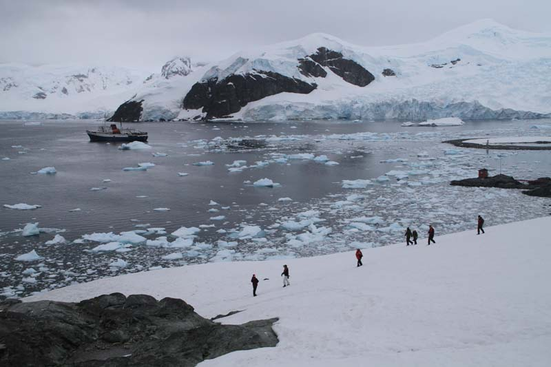 highlights of Antarctica